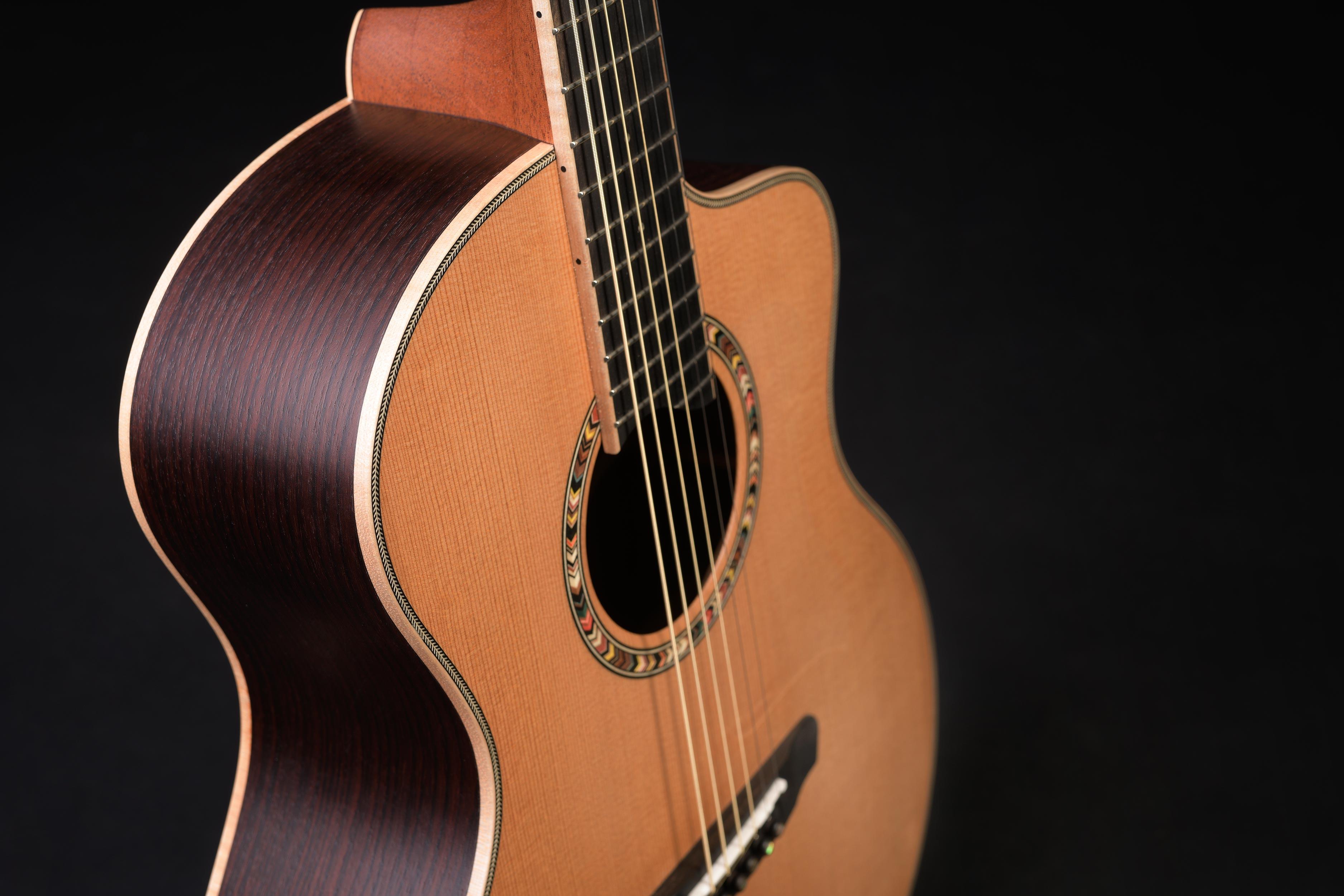 Dowina Pantheon Guitar